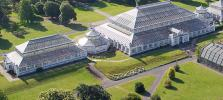 aerial-view-of-the-Temperate-House.jpg